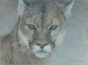 Intent Cougar by Robert Bateman