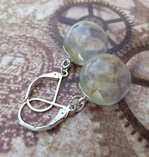 clear dome earrings with dandelion seeds