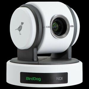 Birddog P100 NDI PTZ Camera