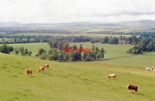PHOTO  ANGUS 1988 NW VIEW OVER STRATHMORE FROM HILL OF FINAVON