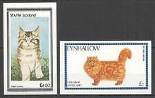 E1342 IMPERF SCOTLAND FAUNA DOMESTIC ANIMALS CATS !!! 2ST mnh