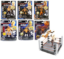 "WWF WWE Wrestling Build N Brawl 3.75"" toy figure set of 6 w/Build Ring playset"