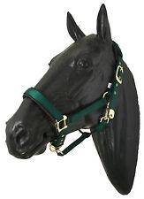 Halfter Deluxe Nylon-halfter Pony grün