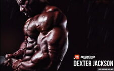 """178 GYM - Dexter Jackson Body Building Muscle Exercise Work Out 38""""x24"""" Poster"""