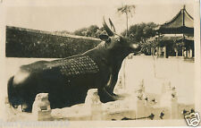 China  Original real Photograph Beijing summer palace Bronze cow statue  HPP2