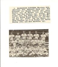 Harrison Jaycees Arkansas 1953 Baseball Team Picture