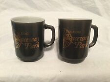 2 Vintage Collectible Toledo Ohio Raceway Park Anchor Hocking coffee cup P
