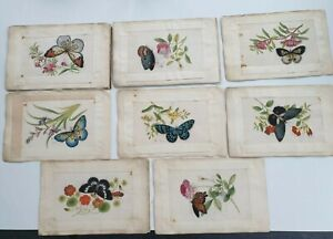8 ANTIQUE CHINESE CHINA QING DYNASTY WATERCOLOR PAINTING PITH RICE PAPER 1850