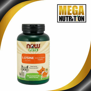 NOW Food Pet L-Lysine for Cats 226.8g | Immune System Support Respiratory Health