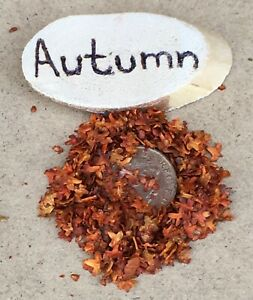 Gram Scatter Of Miniature Imitation Autumn Leaves Tumdee 1:12 Scale Dolls House