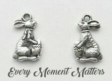 10 x Tibetan Silver EASTER BUNNY RABBIT & EGG ANIMAL 18mm Charms Pendants Beads