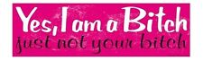 Yes I Am A Bitch Just Not Your Bitch Magnetic Prank Bumper Sticker Magnet Joke