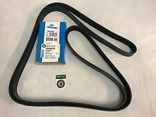 Dayco-Land Rover Defender TD5 Drive Fan Belt (Non A/C) PQS10149