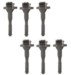 Set of 6 Delphi Direct Ignition Coils for BMW E46 E36 323i 325i 328i 330i L6