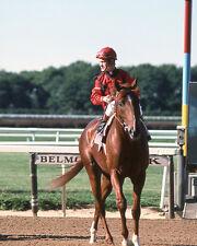 1976 Jockey RON TURCOTTE Glossy 8x10 Photo Print Aeronaut Poster Belmont Stakes