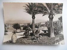 """CPSM """"Cannes - Le jardin des Hespérides"""""""
