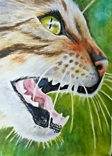 ACEO Original Art Card Cat Detailed Realistic Watercolor Painting Free Shipping