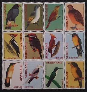 RECENT BLOCK OF 12 VF MNH SURINAM SURINAME WILD LIFE BIRD B60.22 START $0.99