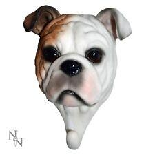 BULLDOG COAT HANGER DOG NOVELTY FUN GIFT BULL DOG RESIN FIGURINE NEMESIS NOW