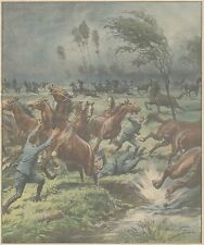 K0138 Cavalli imbizzariti travolgono soldati nel novarese - Stampa - 1931 print