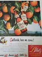 1948 Blatz pilsener Beer brown bottles Orange Tree California here we come ad