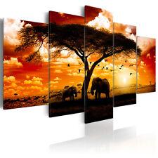 BILDER LEINWAND BILD Afrika Elefant Natur Sonenuntergang 225x112.5 WANDBILDER XL