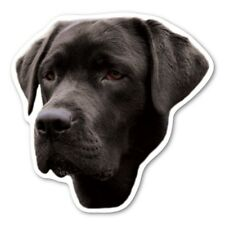 (Black) Labrador Retriever Magnet