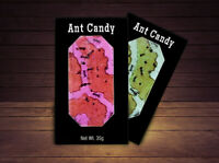 Real Ant Candy 2 Pack, Apple & Cherry, Hotlix Halloween Party Candy Favors