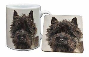 Brindle Cairn Terrier Dog Mug+Coaster Christmas/Birthday Gift Idea, AT-CT2MC