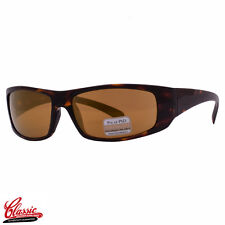 SERENGETI SUNGLASSES 7703 FASANO Dark Tortoise Frame Drivers Gold Mirror Lens