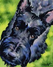 SCOTTISH TERRIER Dog Watercolor 8 x 10 ART Print Signed by Artist DJR