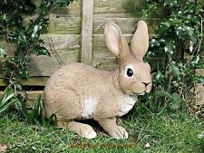 Collectable Rabbit Ornaments/Figurines