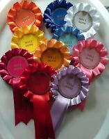 10 X 1 Tier Multicoloured rosettes with Blank Centres For Awards FREE 1st Class