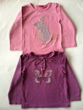 Two Girl's Tops Age 2-4