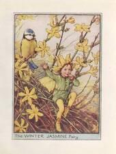 Flower Fairies: The Winter Jasmine Fairy Vintage Print c 1930 Cicely Mary Barker