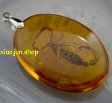 Rare!Amber Pendant Ornament Specimen Fossil Scorpion Insects Pendant