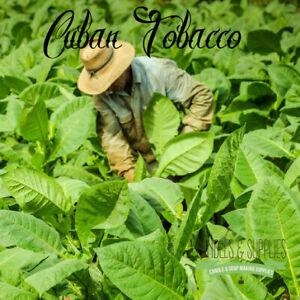 Cuban Tobacco Fragrance Oil SKU #330