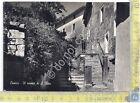 Cartolina - Postcard - Cascia - Il roseto di S. Rita - anni '50