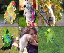 The AVIATOR Pet Bird Harness and Leash
