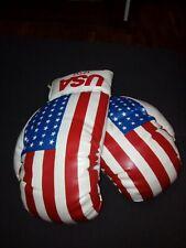 Guantes Boxeo 12 Onzas Bandera Americana