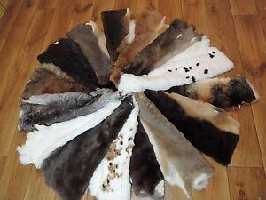 Premium Rex Rabbit Skins Rexkaninchen Rabbit Fur