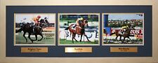 Cox Plate Champions Tribute signed by Malcolm Johnston Photo Proof