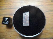 New listing Bullhead City Meteorite Arizona Low Tkw Rarely Available! Part Slice