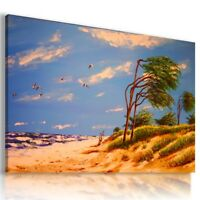 OIL PAINTING BEACH SEA BIRDS PRINT CANVAS WALL ART PICTURE AZ404 MATAGA .