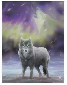 Aurora Canvas Plaque By Anne Stokes. Size 19 X 25 CM