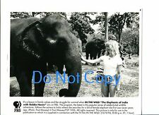Goldie Hawn In The Wild Elephants of India Original Press PBS Still Glossy Photo