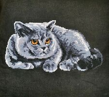 British Shorthair Cat completed cross stitch Picture