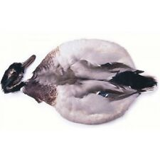Mallard Duck Complete skin, for fly tying, loads of useful fly tying feathers