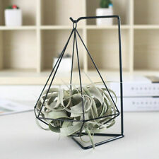 Diamond Shape Metal Tillandsia Hanger Desk Display Rack Air Plant Stand Holder