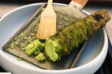Wasabi 100 Pcs Japanese Horseradish Vegetable Home Garden Bonsai Plants Seeds